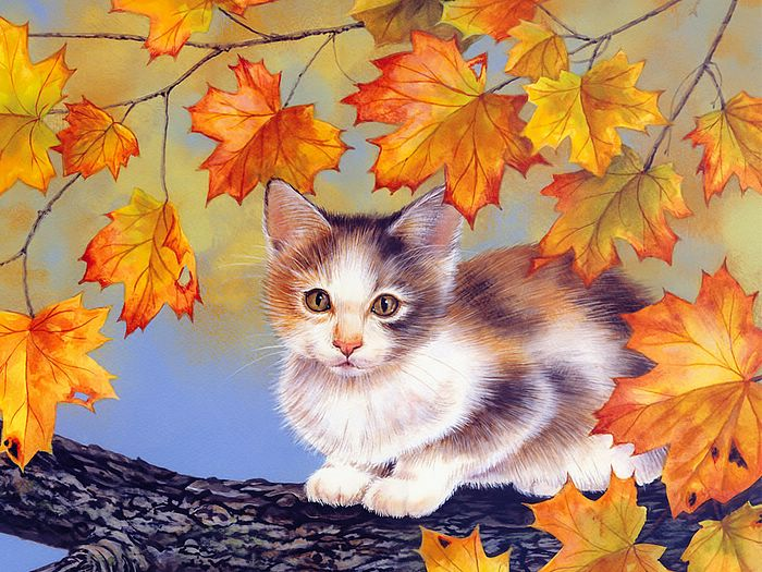 Wallcoo.com_Maday_Jane_2007_Kittens_Calender-10